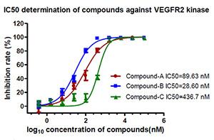 Kinase Assay VEGFR2 I