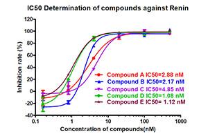 Protease Assay: Renin inhibition using FRET