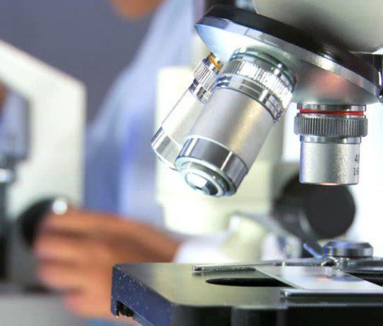 Bioanalytical Services