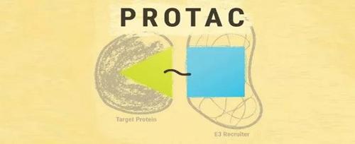 Simple schematic diagram of PROTAC drug composition