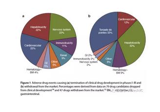 Drug Safety Sciences and the Bottleneck in Drug Development
