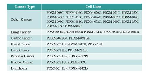 PDX Mouse Tumor Model