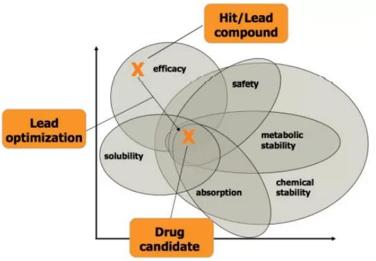Preclinical evaluation factors of lead compounds